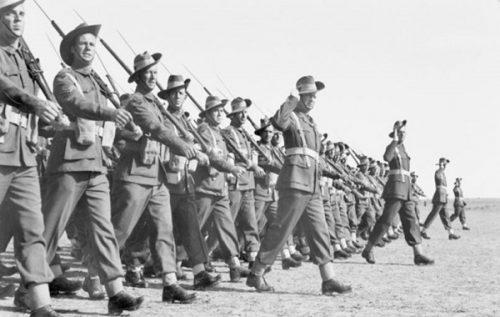 Brigades & Divisions